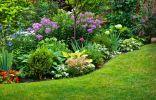 Некоторые из выращиваемых растений могут быть опасны для здоровья