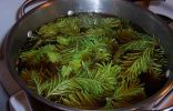 Отвар из трав для приготовления натурального средства защиты растений