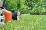 Стрижка газона и уход за кромками