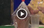 Горшок с посеянными на рассаду семенами в пакете