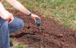 Кислотность почвы — как определить и раскислить