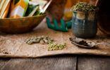 Скарификация — способ ускорить прорастание семян