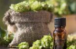 9 лекарственных растений, чтобы снять беспокойство и прогнать бессонницу