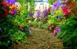 Прогулочная зона — цветник с размахом и петляющими дорожками