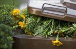 Куда девать растительные остатки, или Не компостом единым