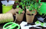 Простые и надежные способы маркировки посевов