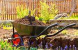 Весенняя подготовка грядок – в содружестве с природой!