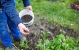 >Как поддержать здоровье почвы – секреты биоорганики