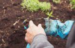 0 неочевидных проблем почвы, снижающих урожай на вашем участке