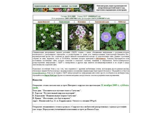 Скриншот сайта flower.onego.ru