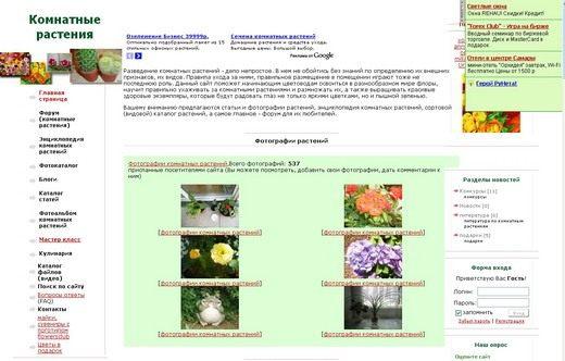 Скриншот сайта flowersclub.info
