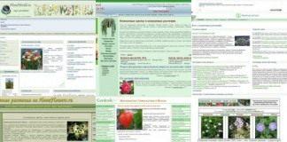 Сайты о комнатных растениях