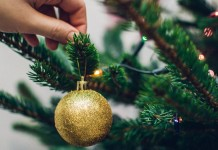 Как сохранить хвою и свежесть новогодней ёлки