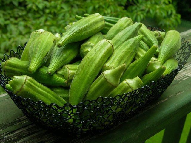 Плоды бамии