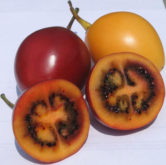 Спелые плоды Тамарилло (Cyphomandra betacea) в разрезе