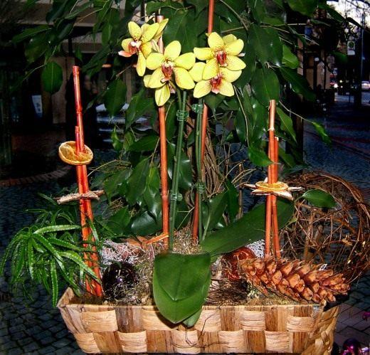 Цветочная композиция с орхидеями