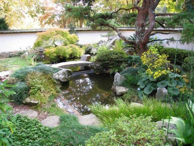 Полутеневой сад
