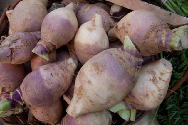 Брюква может расти на любой почве, но лучше — на супесчаной или суглинистой