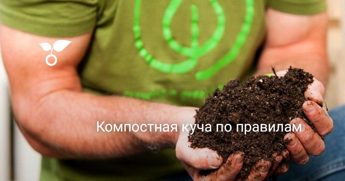 Компостная яма своими руками, варианты изготовления пошагово