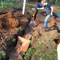 Подготовка траншеи для посадки малины