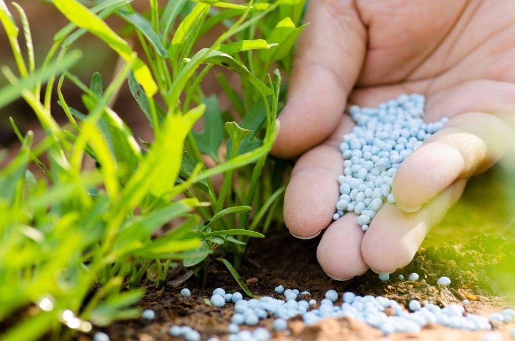 виды минеральных удобрений и их классификация