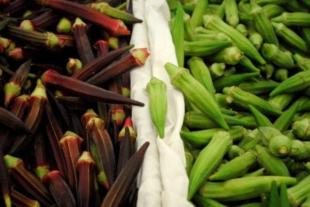 Плоды Бамии зелёной и красной