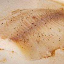 Смажьте филе окуня растительным маслом