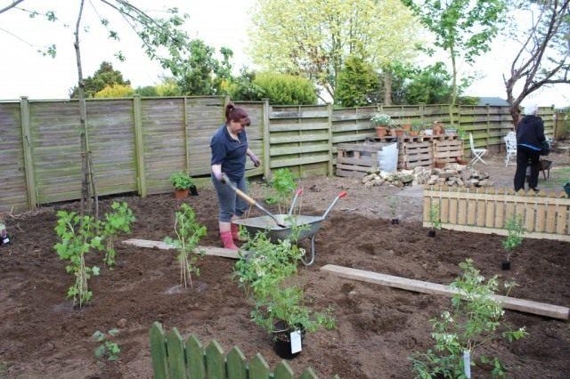 Спланируйте будущий сад так, чтобы растения не мешали друг другу и не загораживали свет