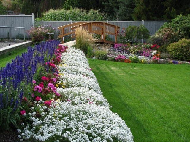 Цветник из однолетних и многолетних растений
