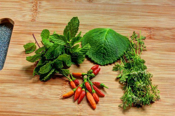 mint-and-chili