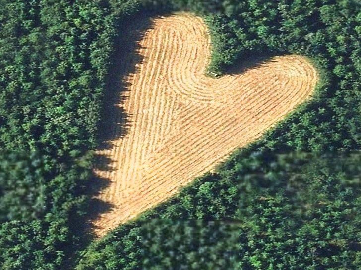 Heart-shaped-meadow