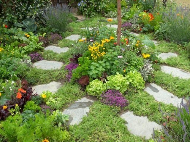 Чтобы теневыносливые пряные травы и листовые овощи стали действительно звездой избранного уголка, подберите им достойных партнеров