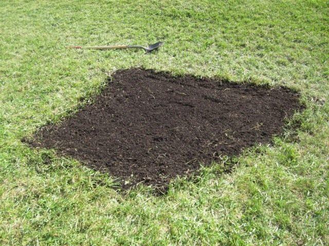 Приступаем к восстановлению газона