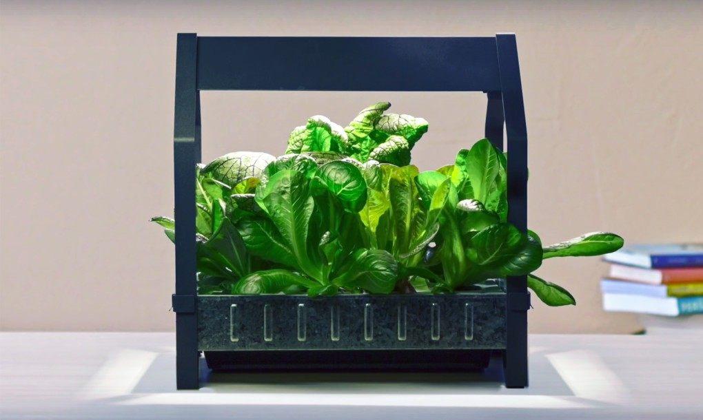 ikea-hydroponic1