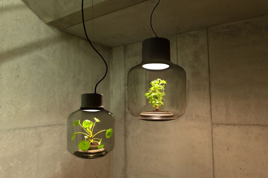 we-designed-these-lamps-to-grow-plants-in-windowless-spaces-1