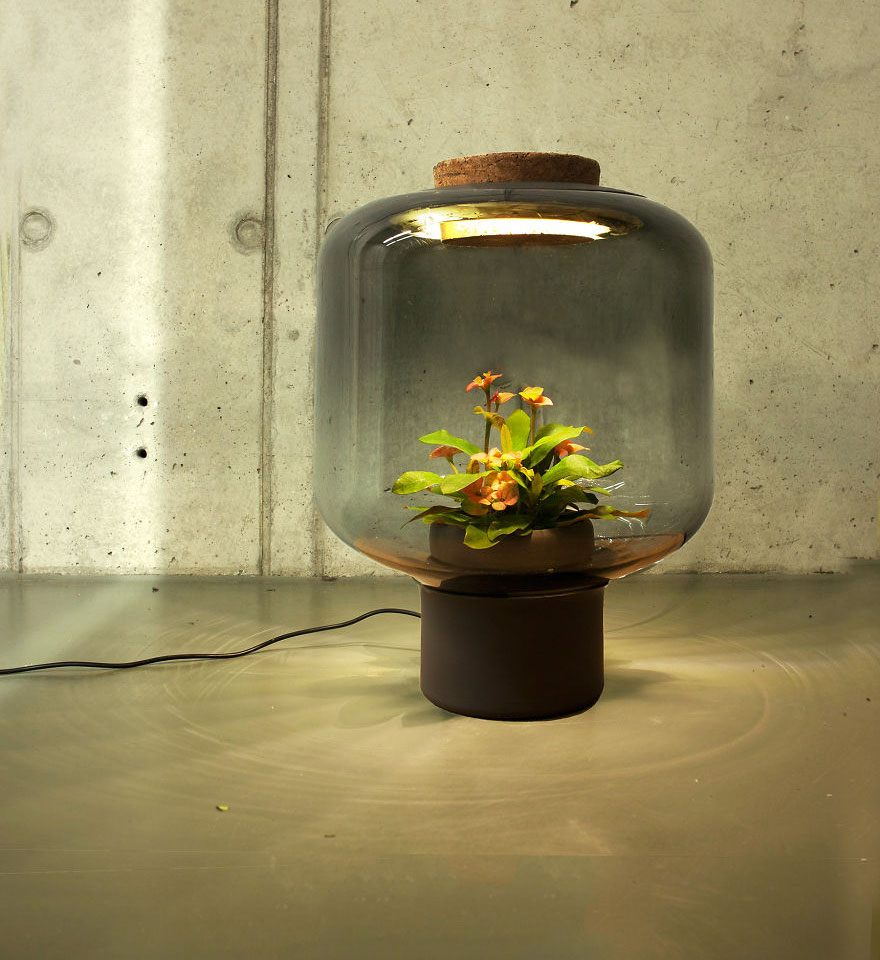 we-designed-these-lamps-to-grow-plants-in-windowless-spaces-3