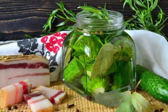 Храним малосольные огурцы с тархуном в холодильнике или погребе
