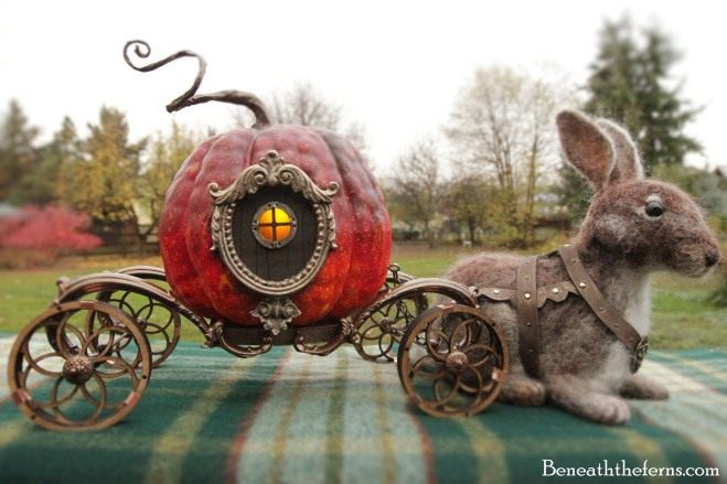 cinderella-pumpkin-1