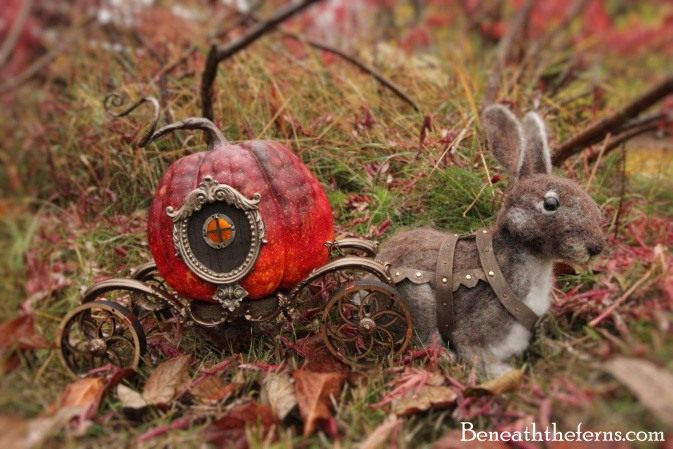 cinderella-pumpkin-2