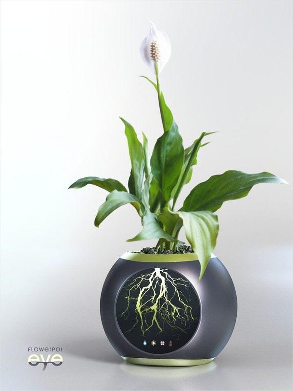 EYE-Flower-Pot-01