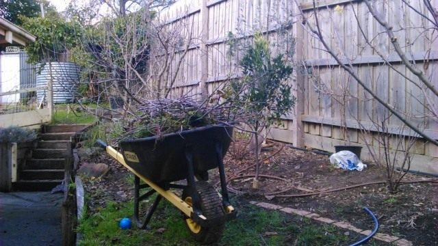 Осенняя обработка сада