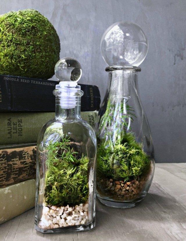 Террариумы в парфюмерных бутылочках