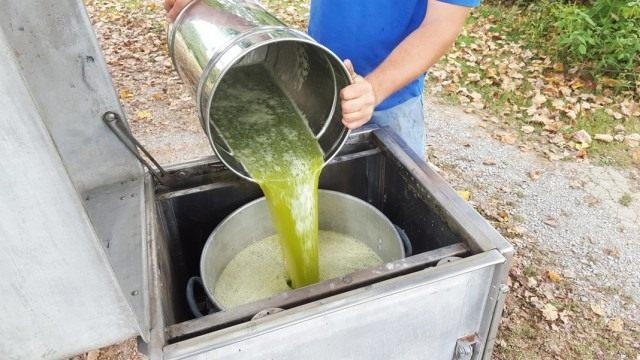 Приготовление раствора из растений инсектицидов.