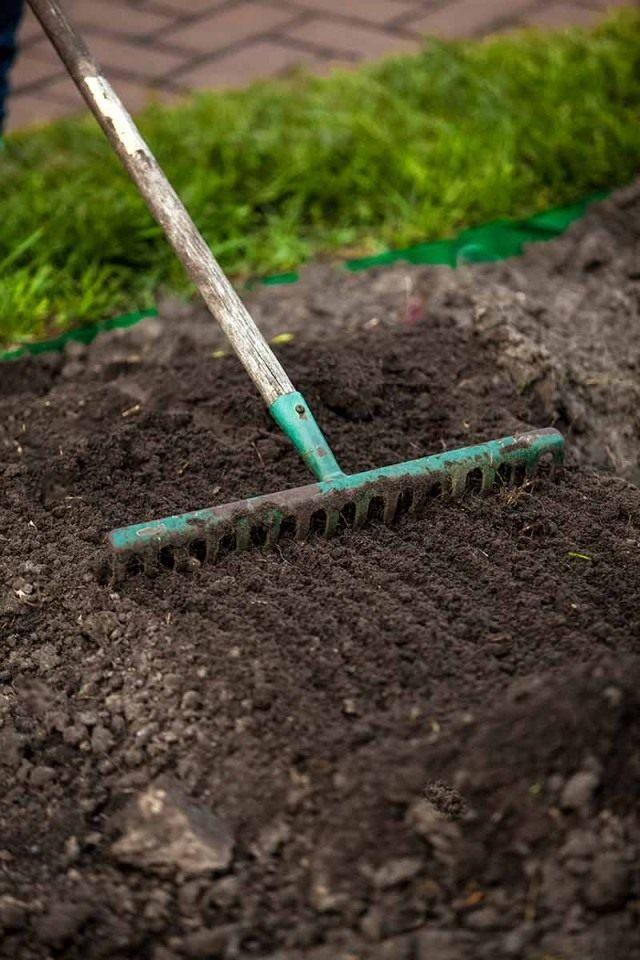 Подготовка площадки для посева газона