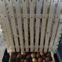Контейнер для хранения картофеля