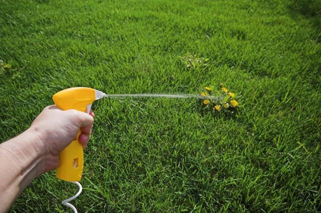 Обработка сорняков гербицидами
