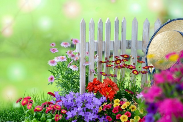 10 плюсов отпуска в собственном саду