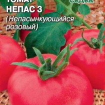 Томат сорта «Непас 3» (Розовый)
