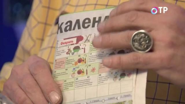 Календарь работ для дачников