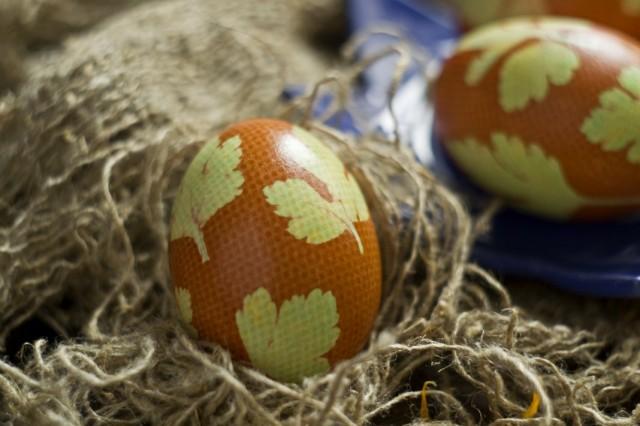 Крашеные яйца к Пасхе, украшенные листиками петрушки